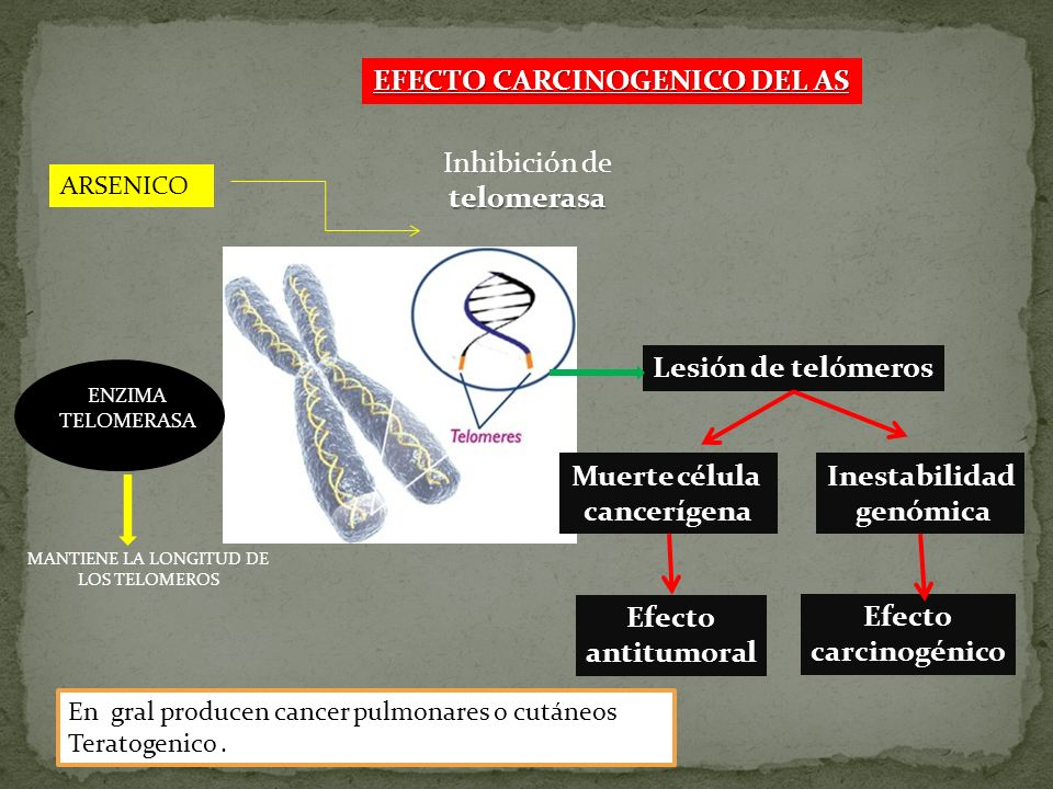 EFECTO CARCINOGENICO DEL AS