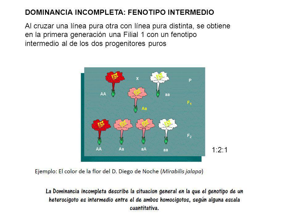 Tema 3: Principios mendelianos y extensiones