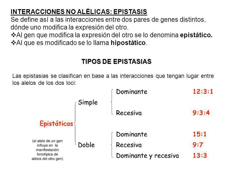 INTERACCIONES NO ALÉLICAS: EPISTASIS