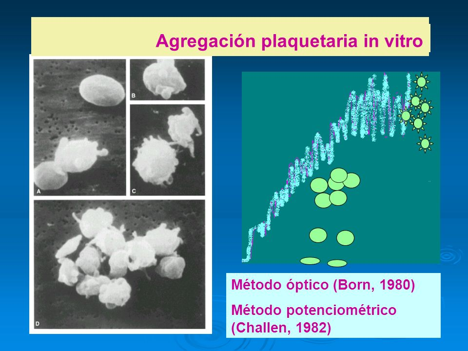 Agregación plaquetaria in vitro