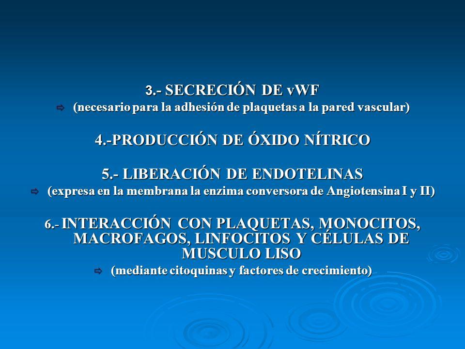 4.-PRODUCCIÓN DE ÓXIDO NÍTRICO 5.- LIBERACIÓN DE ENDOTELINAS