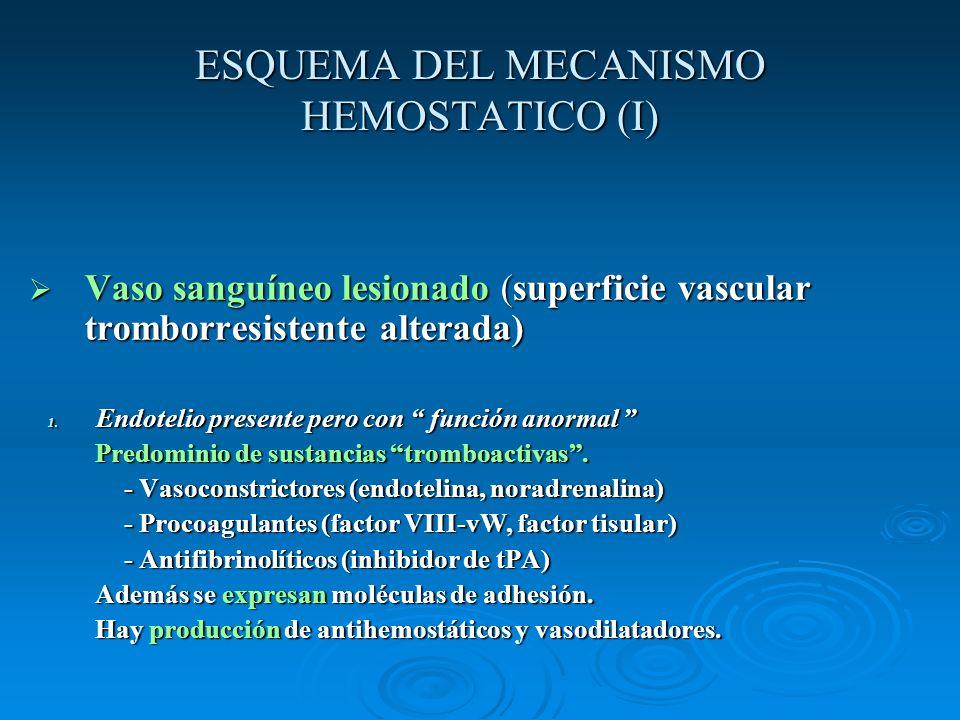 ESQUEMA DEL MECANISMO HEMOSTATICO (I)