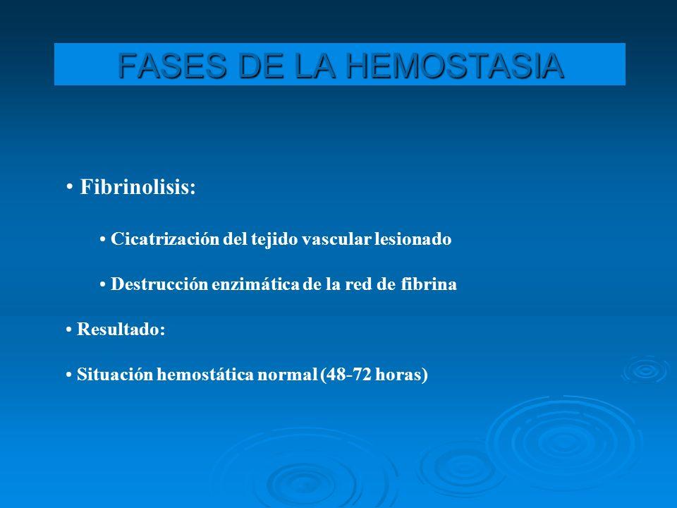 FASES DE LA HEMOSTASIA Fibrinolisis:
