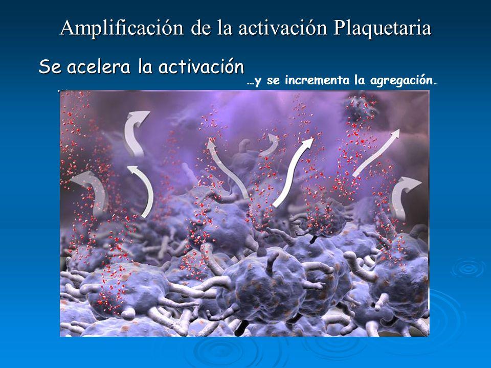 Amplificación de la activación Plaquetaria