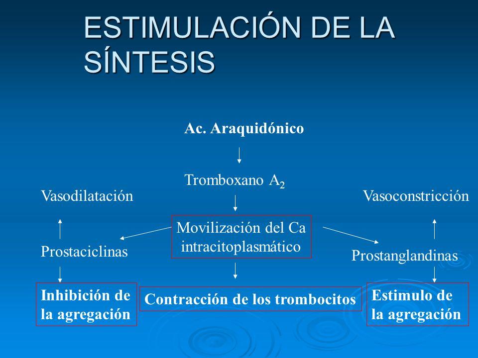 ESTIMULACIÓN DE LA SÍNTESIS