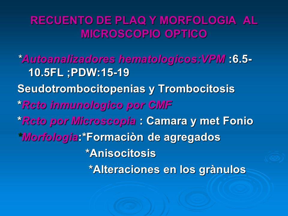 RECUENTO DE PLAQ Y MORFOLOGIA AL MICROSCOPIO OPTICO