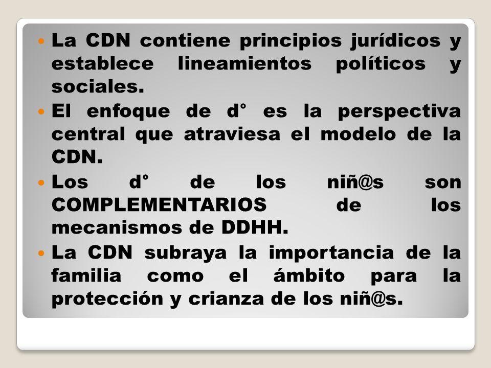 La CDN contiene principios jurídicos y establece lineamientos políticos y sociales.