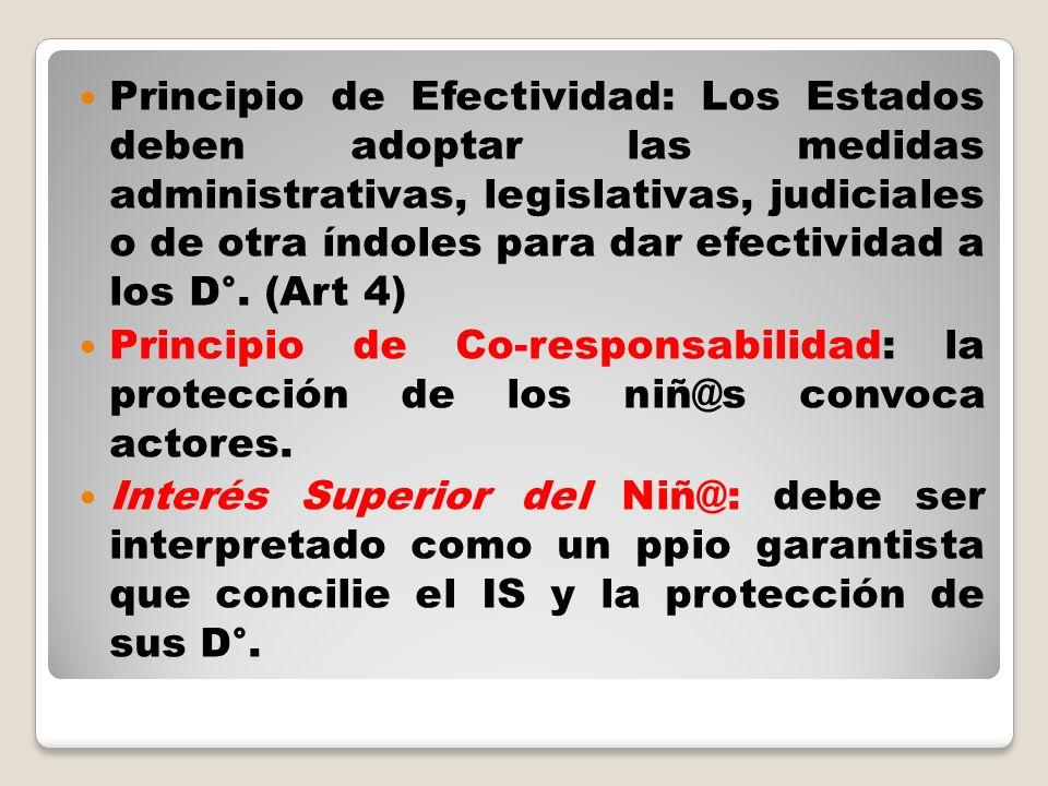 Principio de Efectividad: Los Estados deben adoptar las medidas administrativas, legislativas, judiciales o de otra índoles para dar efectividad a los D°. (Art 4)