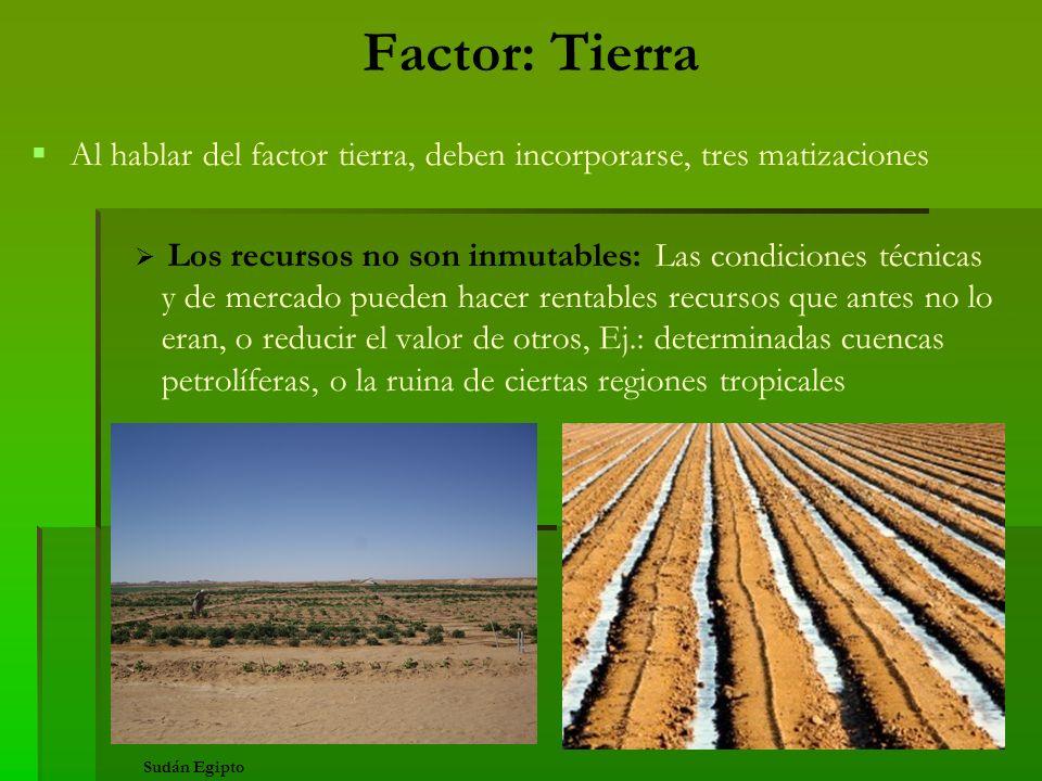 Factor: Tierra Al hablar del factor tierra, deben incorporarse, tres matizaciones.