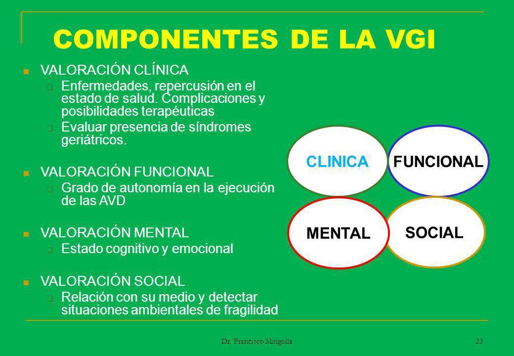 COMPONENTES DE LA VGI CLINICA FUNCIONAL MENTAL SOCIAL