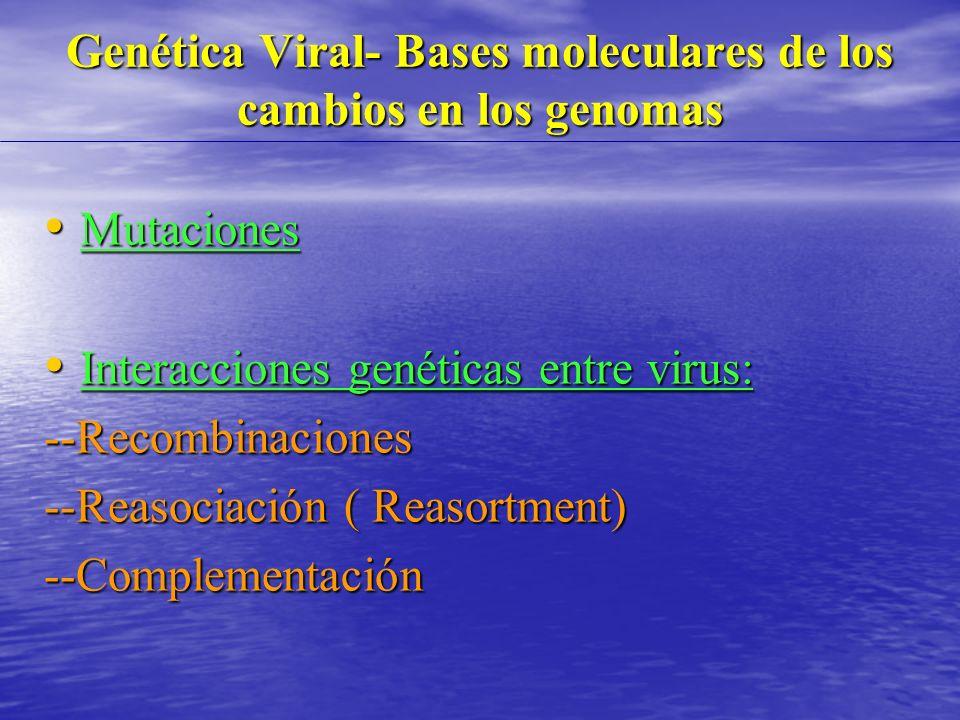 Genética Viral- Bases moleculares de los cambios en los genomas