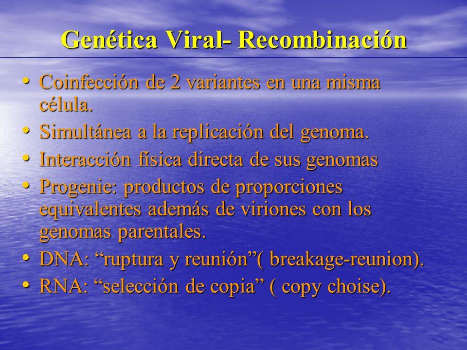 Genética Viral- Recombinación