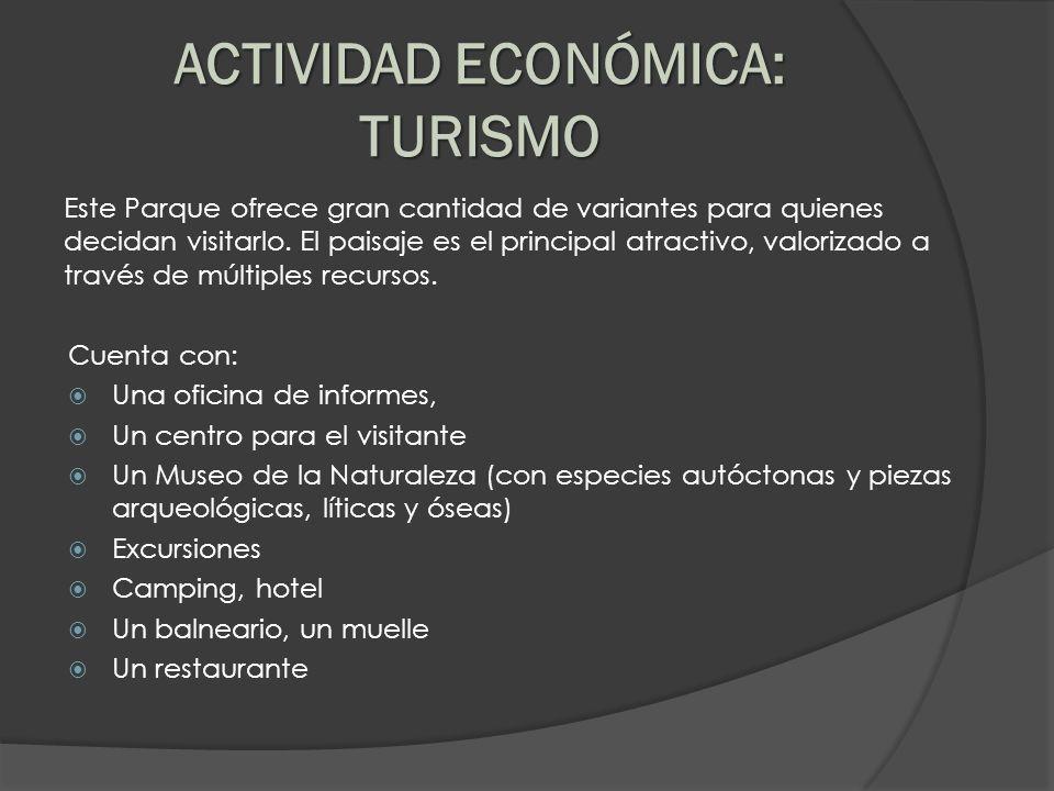 ACTIVIDAD ECONÓMICA: TURISMO
