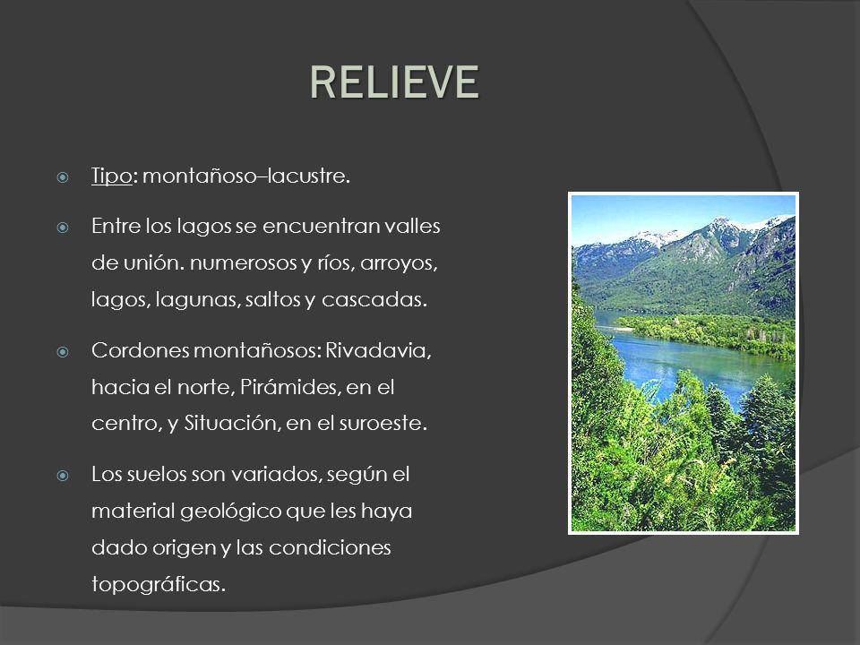 RELIEVE Tipo: montañoso–lacustre.