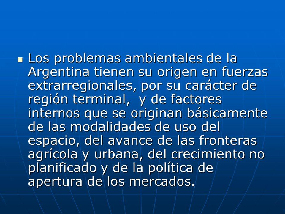 Los problemas ambientales de la Argentina tienen su origen en fuerzas extrarregionales, por su carácter de región terminal, y de factores internos que se originan básicamente de las modalidades de uso del espacio, del avance de las fronteras agrícola y urbana, del crecimiento no planificado y de la política de apertura de los mercados.