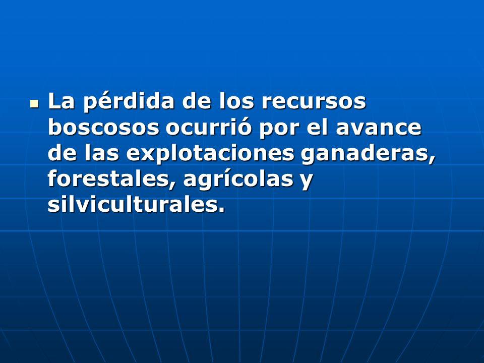 La pérdida de los recursos boscosos ocurrió por el avance de las explotaciones ganaderas, forestales, agrícolas y silviculturales.