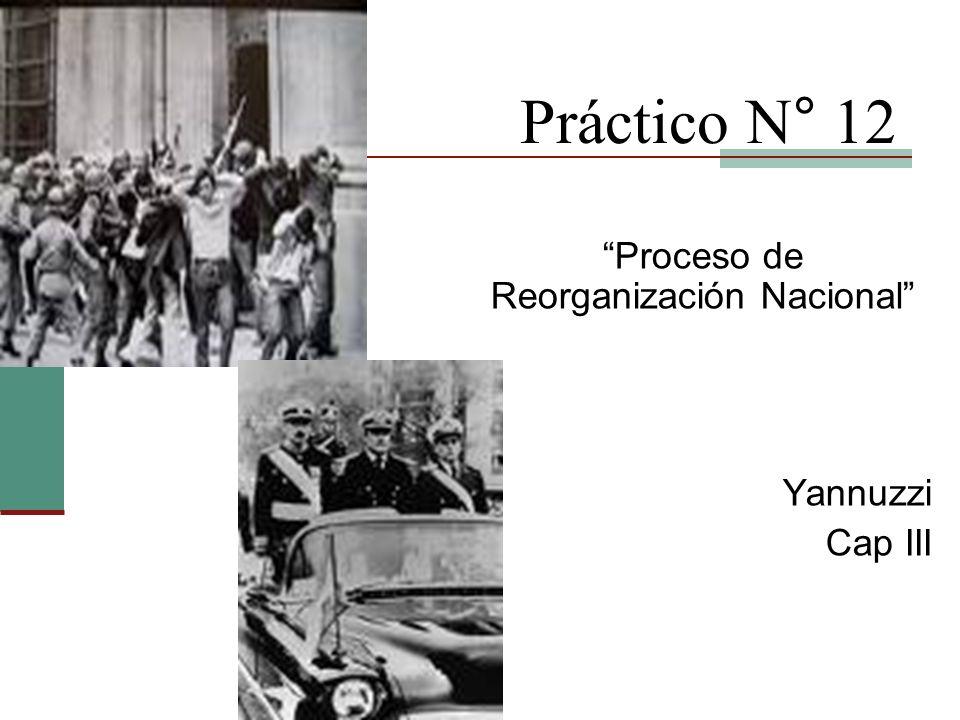 Proceso de Reorganización Nacional Yannuzzi Cap III