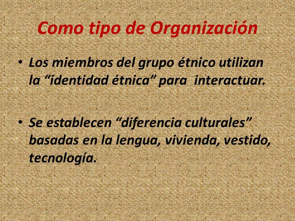 Como tipo de Organización