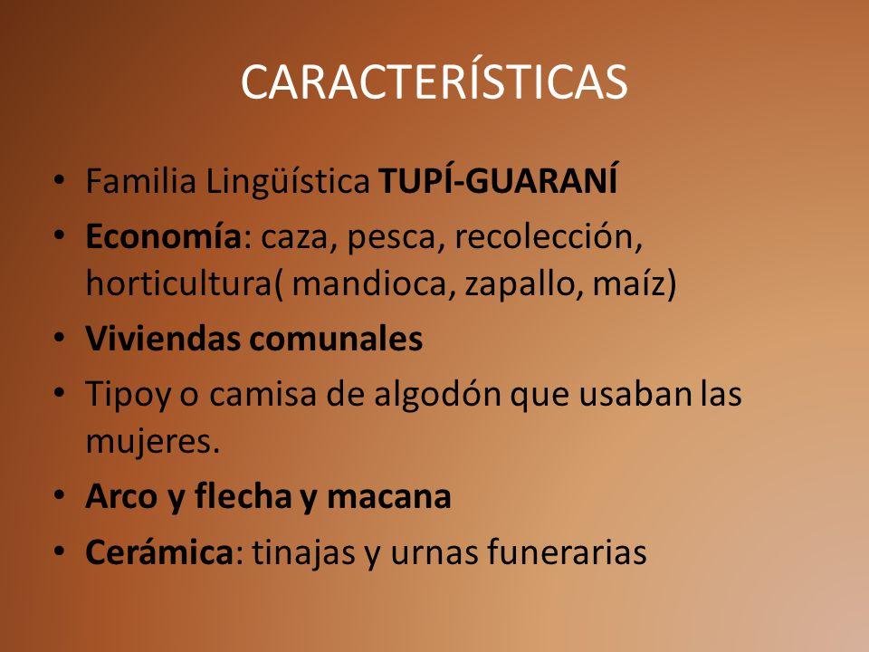 CARACTERÍSTICAS Familia Lingüística TUPÍ-GUARANÍ