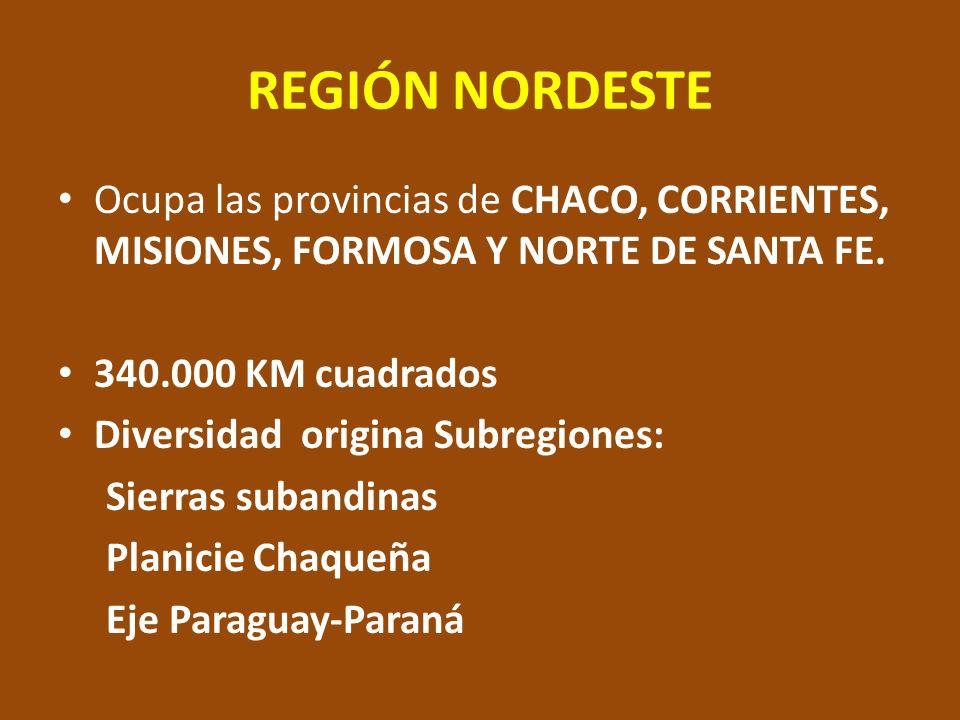 REGIÓN NORDESTE Ocupa las provincias de CHACO, CORRIENTES, MISIONES, FORMOSA Y NORTE DE SANTA FE. 340.000 KM cuadrados.