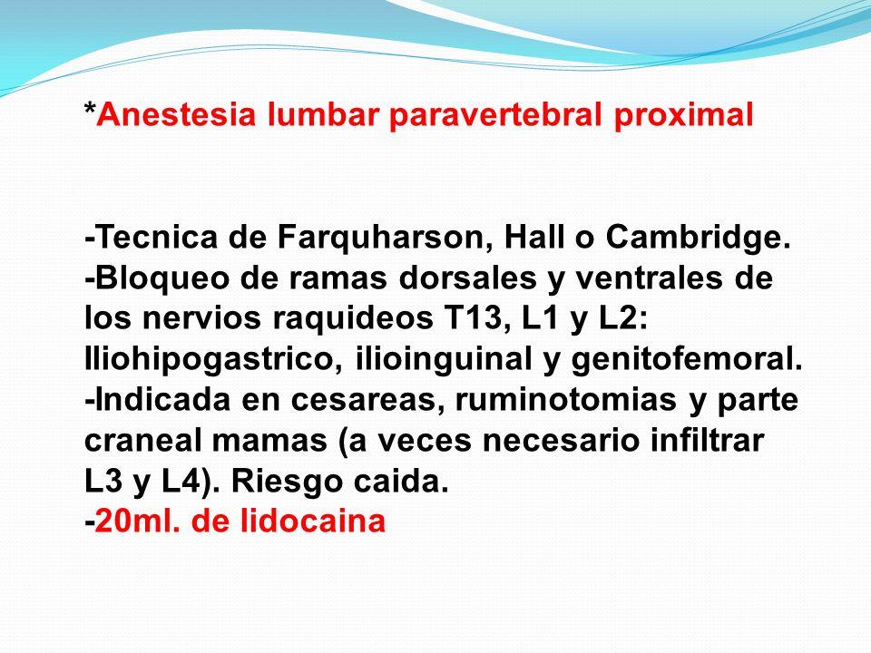*Anestesia lumbar paravertebral proximal