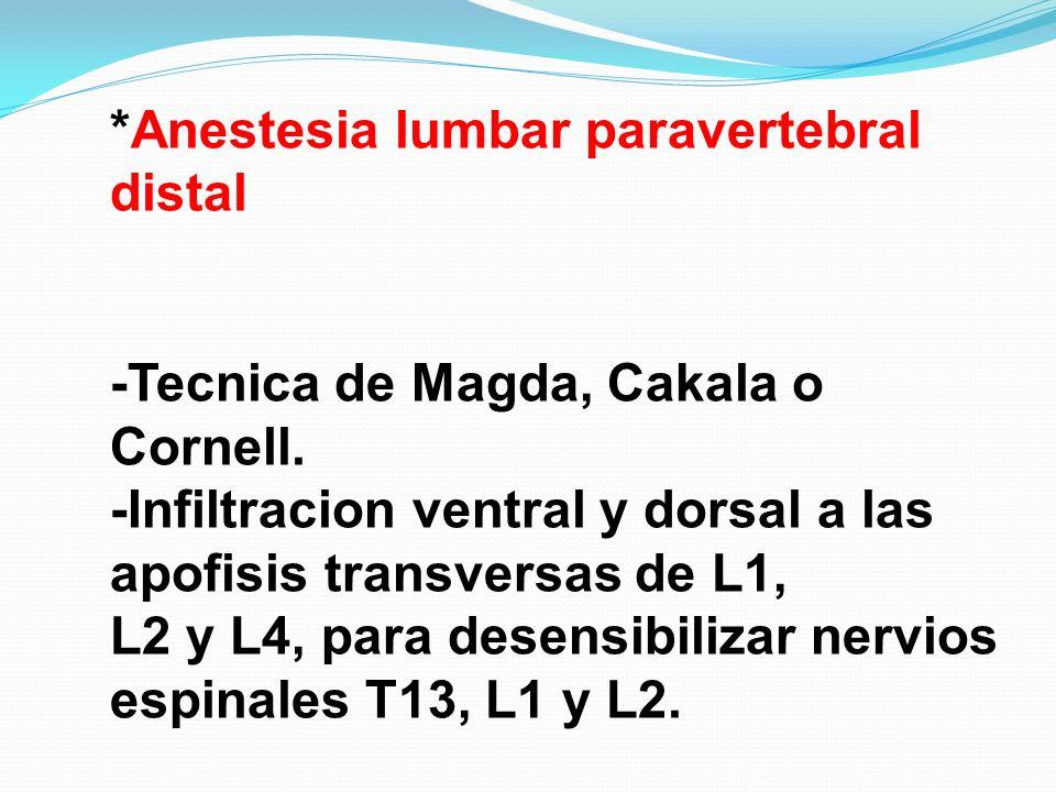 *Anestesia lumbar paravertebral distal