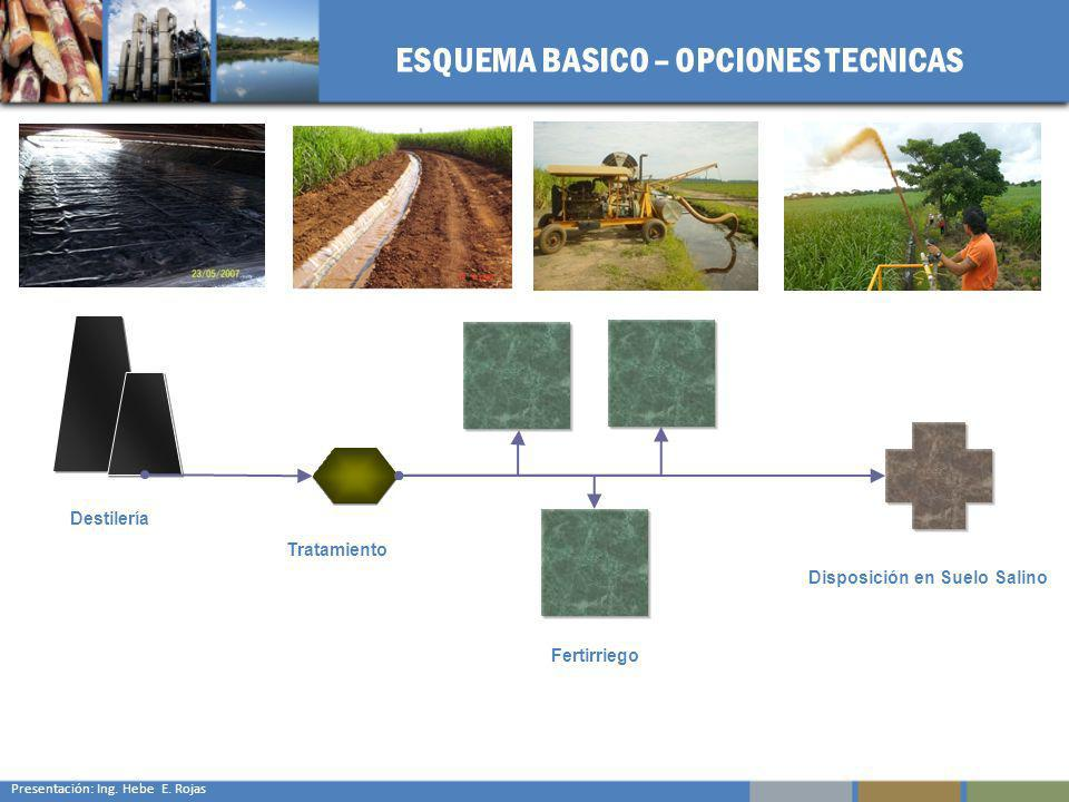 ESQUEMA BASICO – OPCIONES TECNICAS