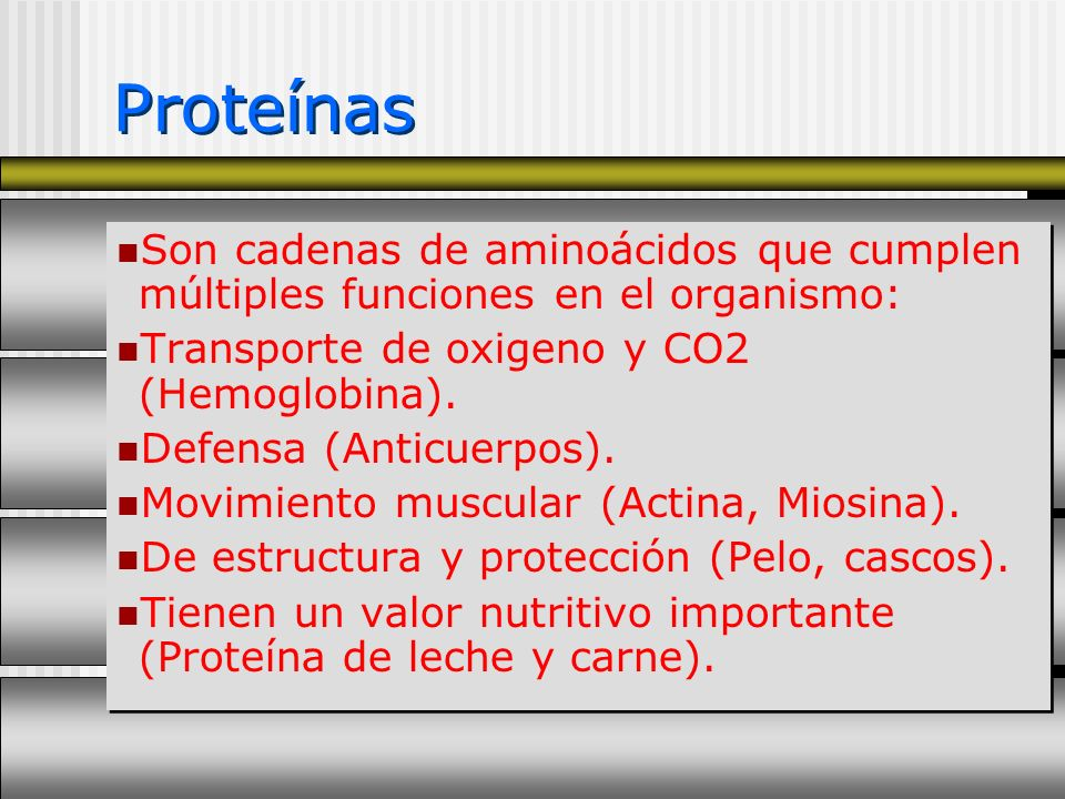 Proteínas Son cadenas de aminoácidos que cumplen múltiples funciones en el organismo: Transporte de oxigeno y CO2 (Hemoglobina).
