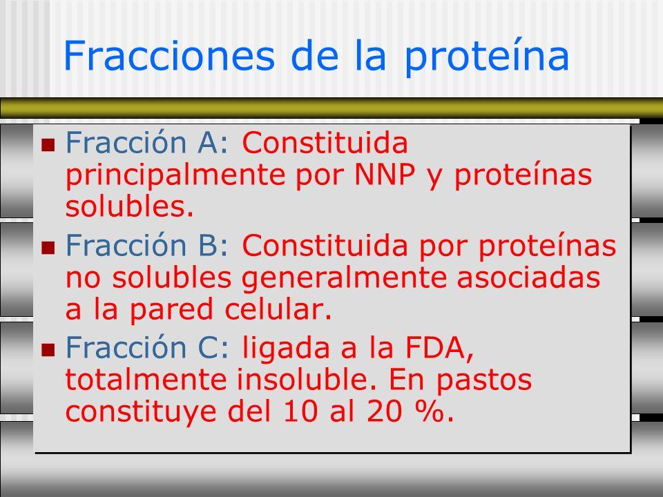 Fracciones de la proteína