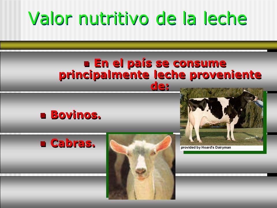 Valor nutritivo de la leche
