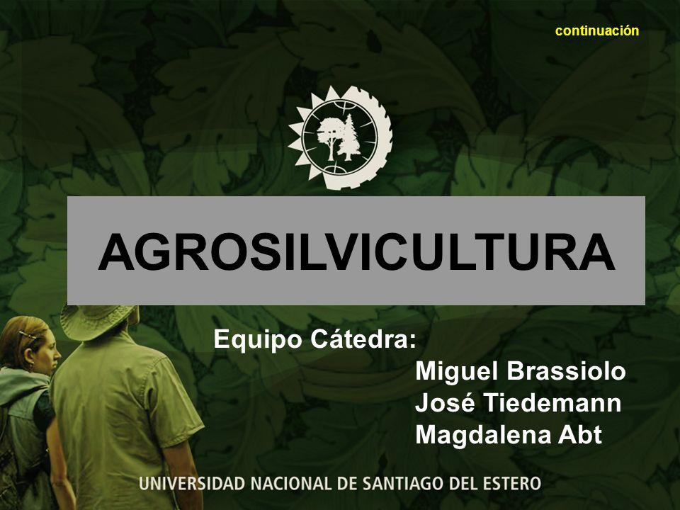 AGROSILVICULTURA Equipo Cátedra: Miguel Brassiolo José Tiedemann
