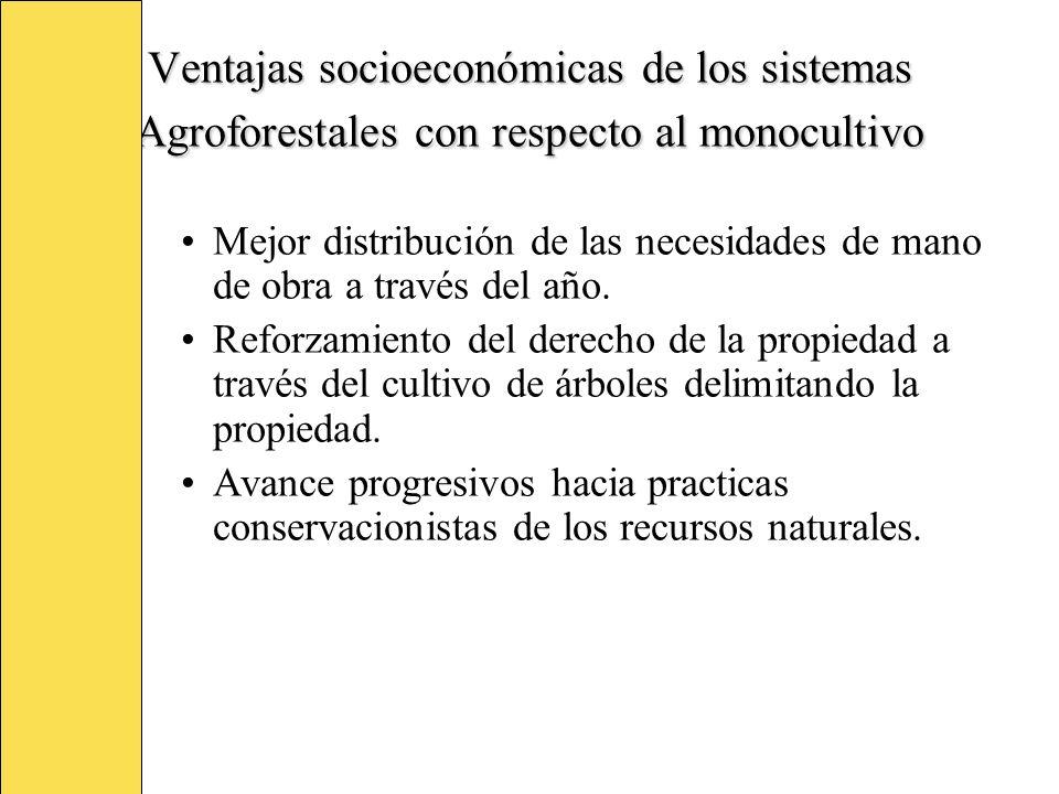 Ventajas socioeconómicas de los sistemas Agroforestales con respecto al monocultivo