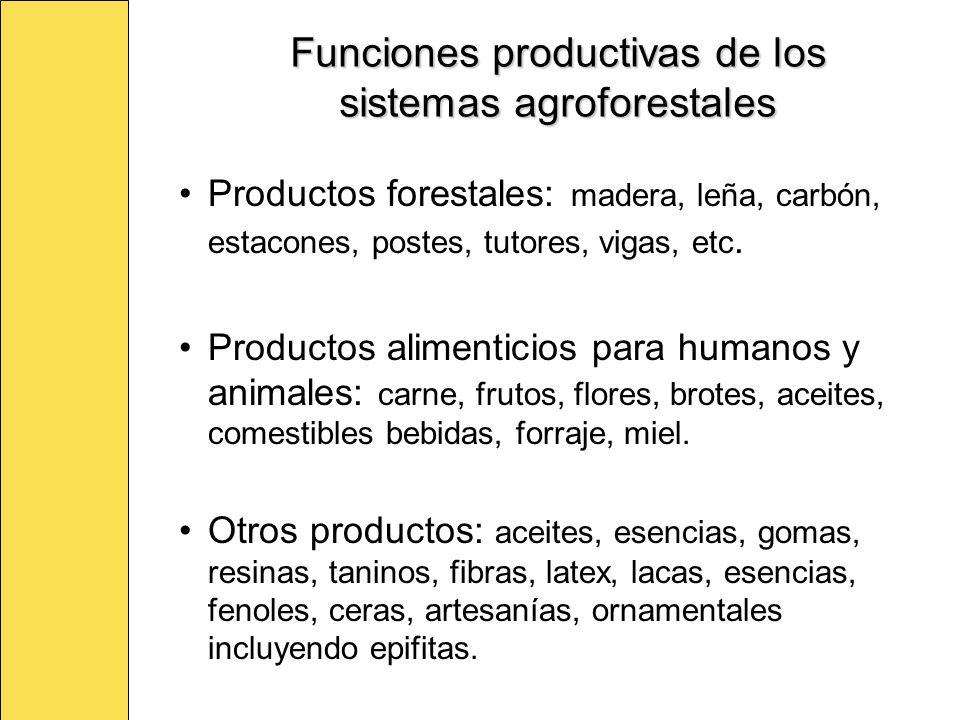 Funciones productivas de los sistemas agroforestales