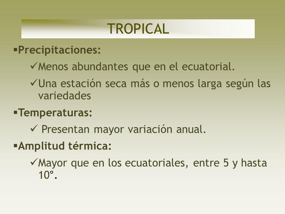 TROPICAL Precipitaciones: Menos abundantes que en el ecuatorial.