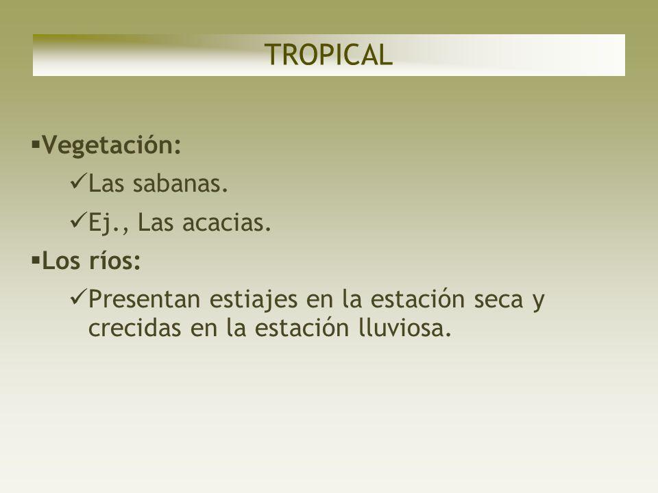 TROPICAL Vegetación: Las sabanas. Ej., Las acacias. Los ríos: