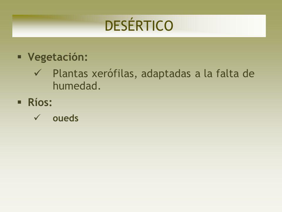 DESÉRTICO Vegetación: