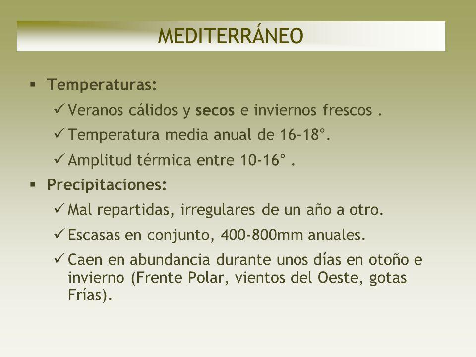 MEDITERRÁNEO Temperaturas:
