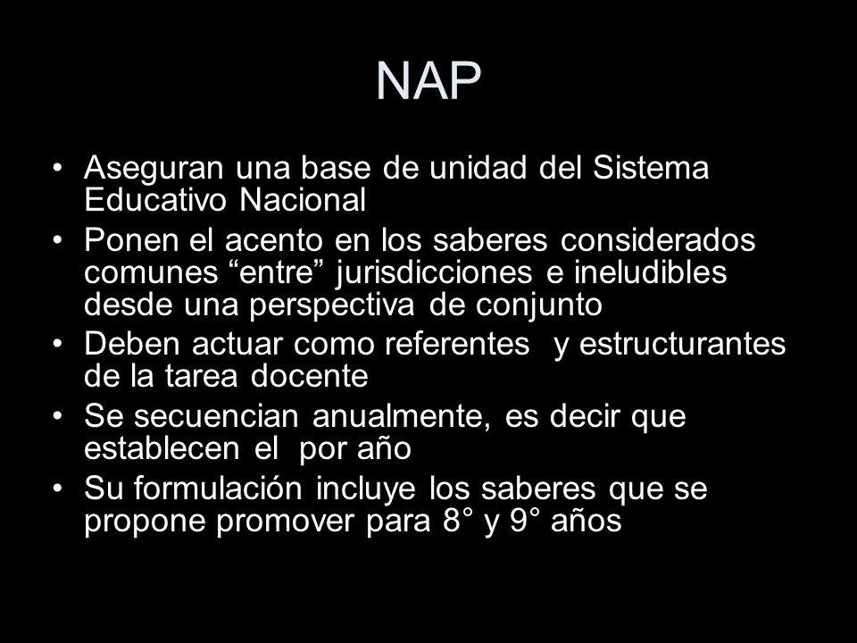 NAP Aseguran una base de unidad del Sistema Educativo Nacional