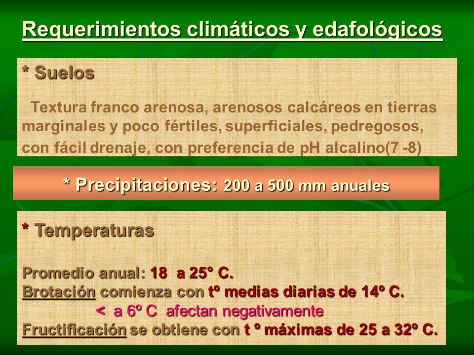 * Precipitaciones: 200 a 500 mm anuales