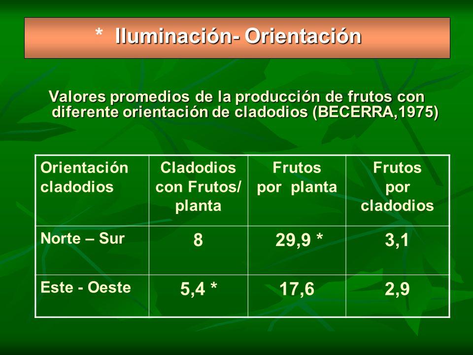 * Iluminación- Orientación
