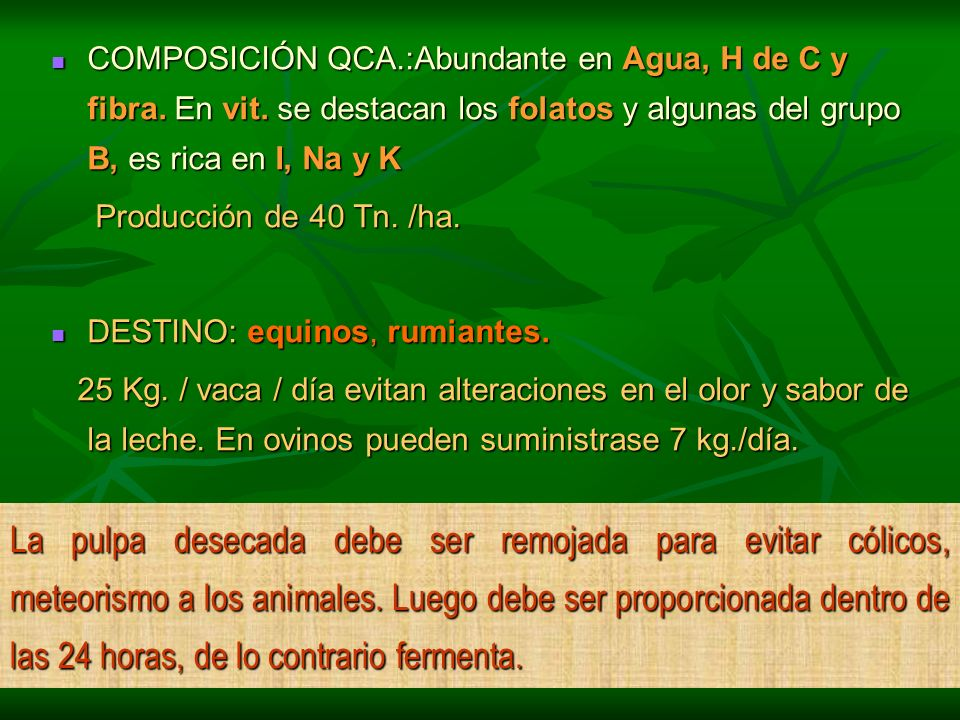 COMPOSICIÓN QCA. :Abundante en Agua, H de C y fibra. En vit