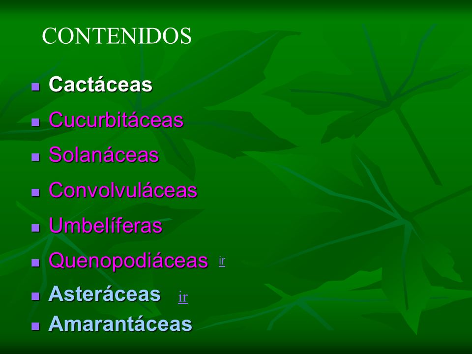 CONTENIDOS Cactáceas Cucurbitáceas Solanáceas Convolvuláceas