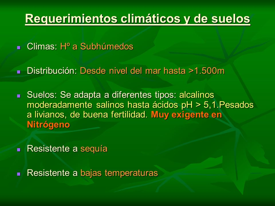 Requerimientos climáticos y de suelos