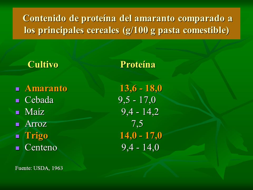 Contenido de proteína del amaranto comparado a los principales cereales (g/100 g pasta comestible)