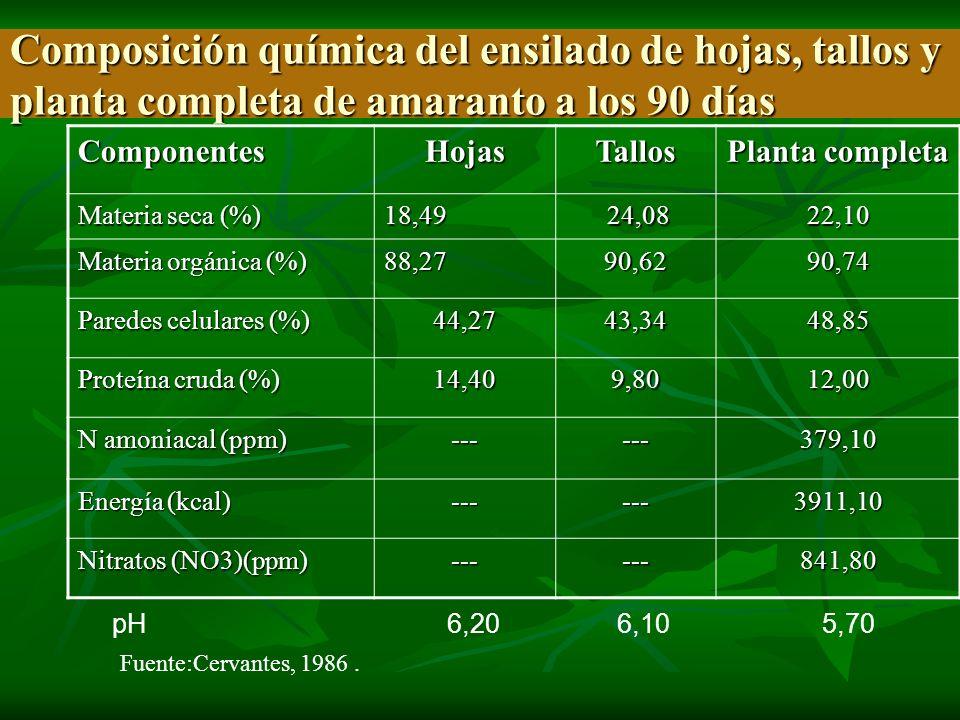Composición química del ensilado de hojas, tallos y planta completa de amaranto a los 90 días