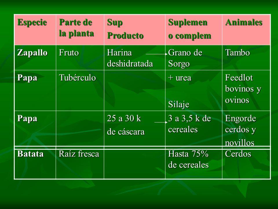 Especie Parte de la planta. Sup. Producto. Suplemen. o complem. Animales. Zapallo. Fruto. Harina deshidratada.