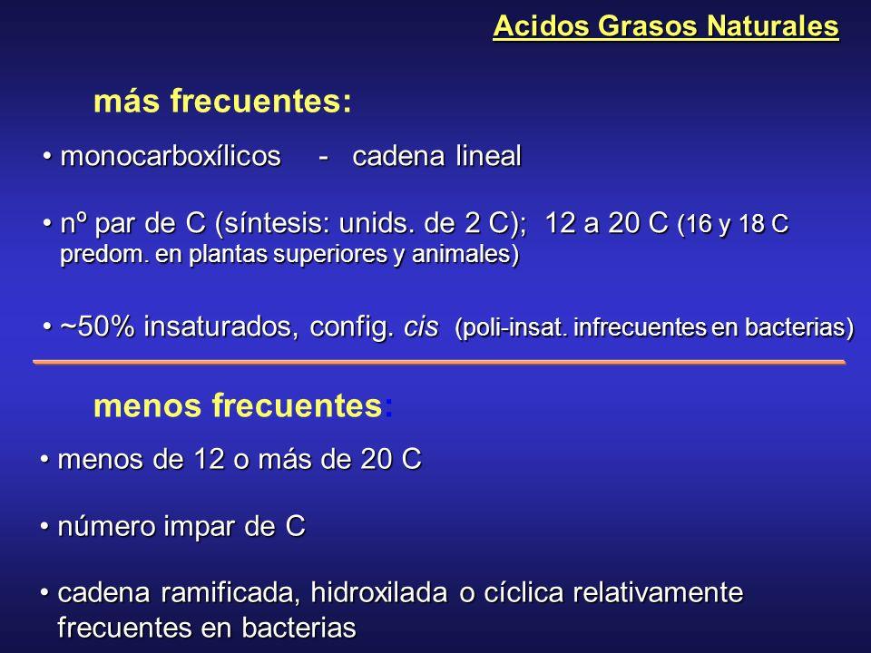 Acidos Grasos Naturales