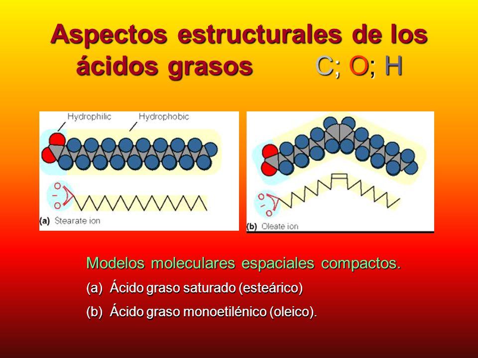 Aspectos estructurales de los ácidos grasos C; O; H