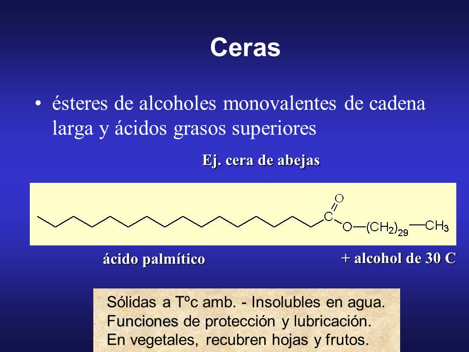 Ceras ésteres de alcoholes monovalentes de cadena larga y ácidos grasos superiores. Ej. cera de abejas.