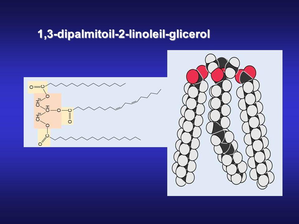 1,3-dipalmitoil-2-linoleil-glicerol